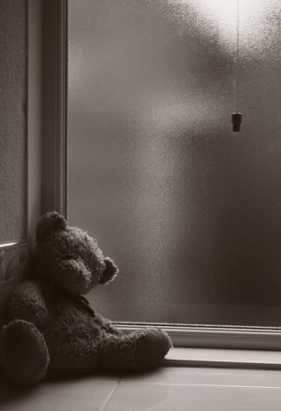 teddy-2383694_960_720
